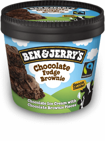 Chocolate Fudge Brownie Chocolate Fudge Brownie Single Serve